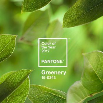 culoarea anului 2017 Greenery 11